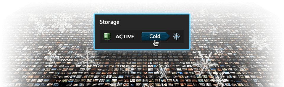 Active & Cold Online Storage