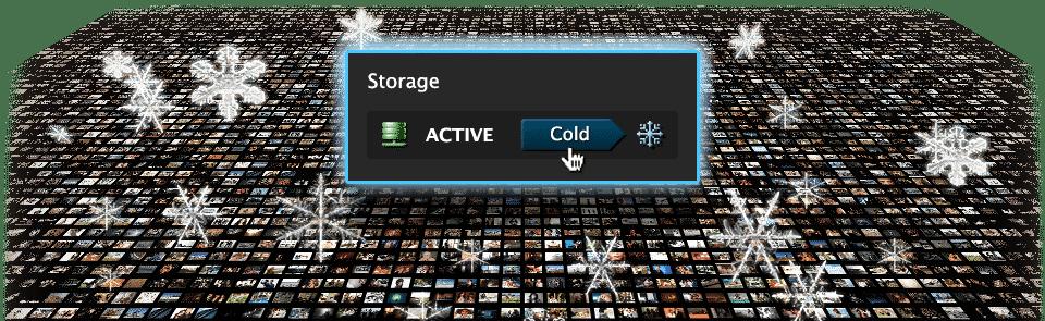 Active & Cold Online Storage