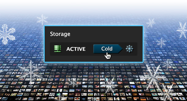 Active & Cold Storage