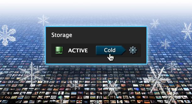 Active & Cold Storage