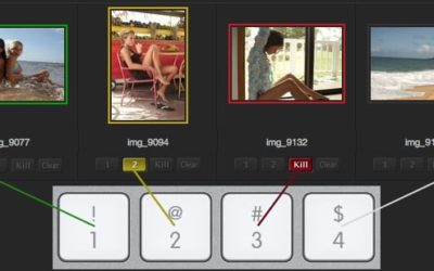 DF Studio Updates: November 2014 – Keyboard Controls, Type-Ahead Functionality, And More Metadata Tools